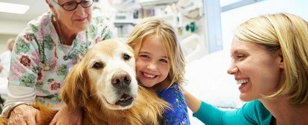 Onorare il lavoro straordinario degli animali di terapia