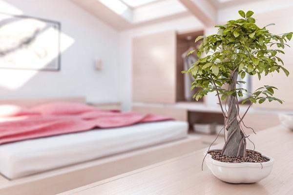 Come decorare una camera da letto feng shui stile