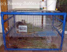 Cornice pvc molto fresco per gabbie per conigli interni