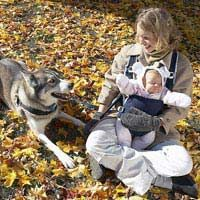 Abbiamo curato la gelosia del cane di nuovo bambino: un caso di studio